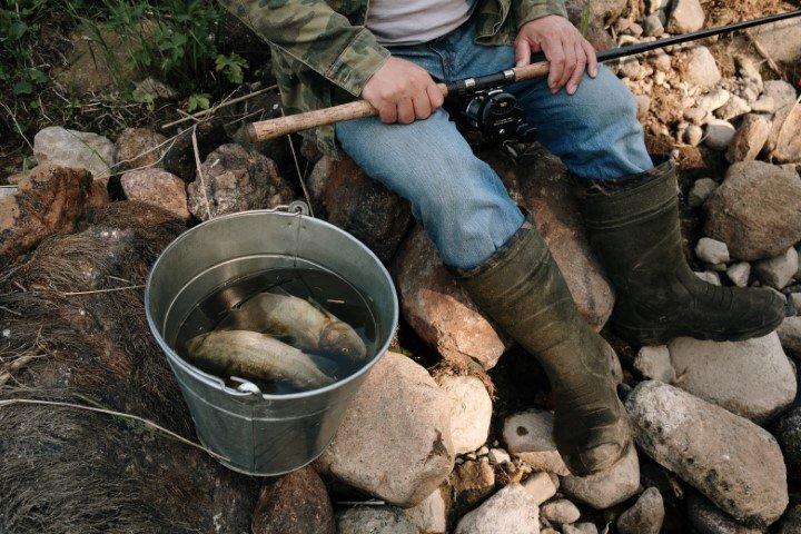 hobby vissen